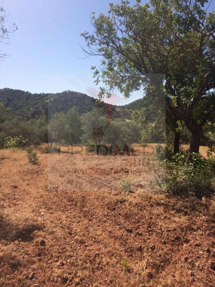 Quintas e herdades para comprar, Salir, Faro - Foto 5