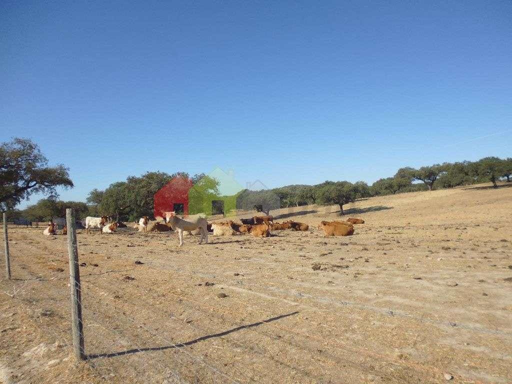 Quintas e herdades para comprar, Vila Verde de Ficalho, Beja - Foto 1