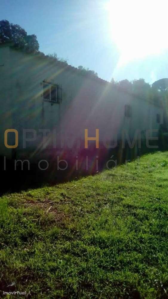 Moradia para comprar, Brogueira, Parceiros de Igreja e Alcorochel, Torres Novas, Santarém - Foto 24