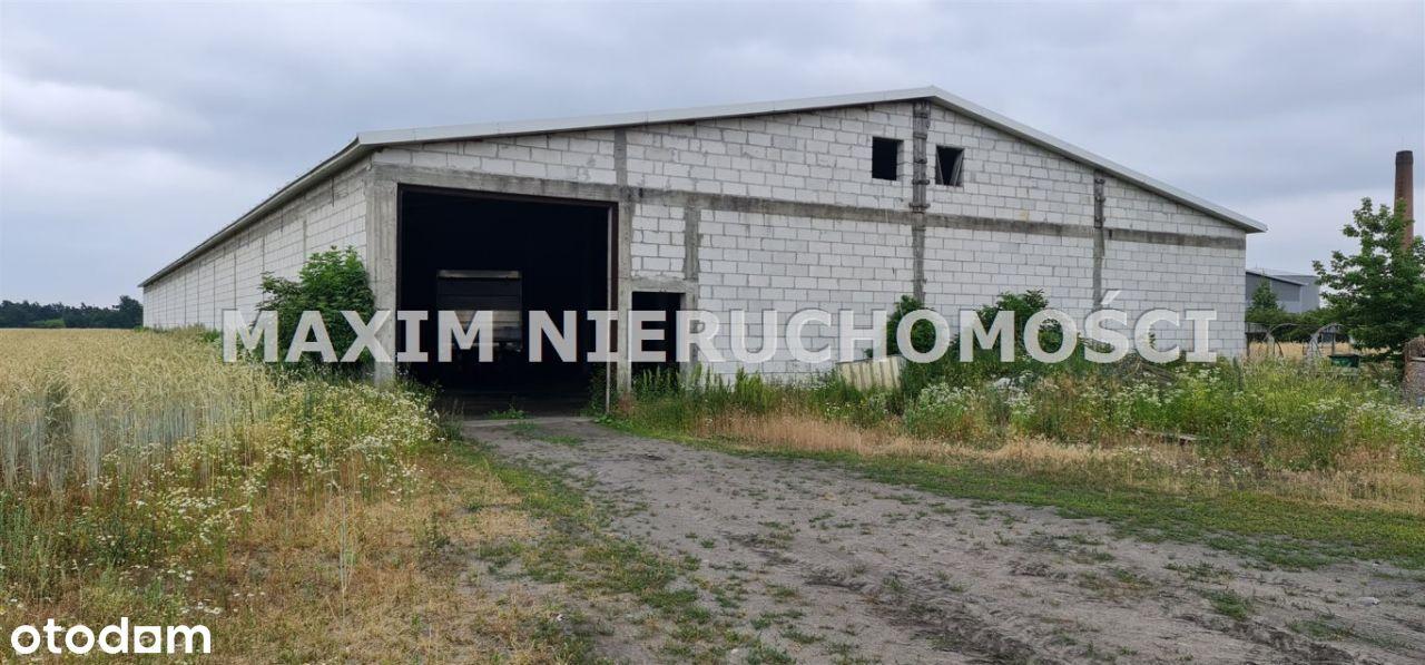 Hala/Magazyn, 1 723 m², Zakroczym