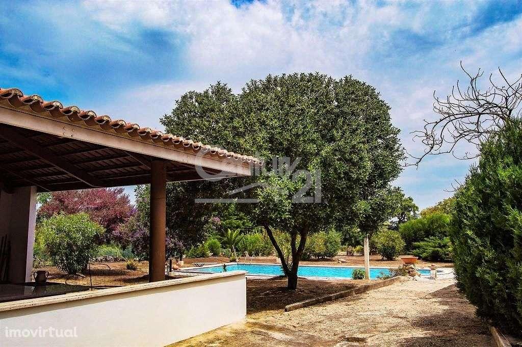Quintas e herdades para comprar, Santiago do Cacém, Santa Cruz e São Bartolomeu da Serra, Setúbal - Foto 46