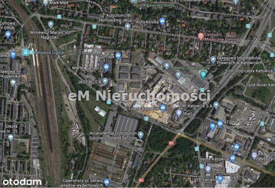 Lokal użytkowy, 700 m², Katowice