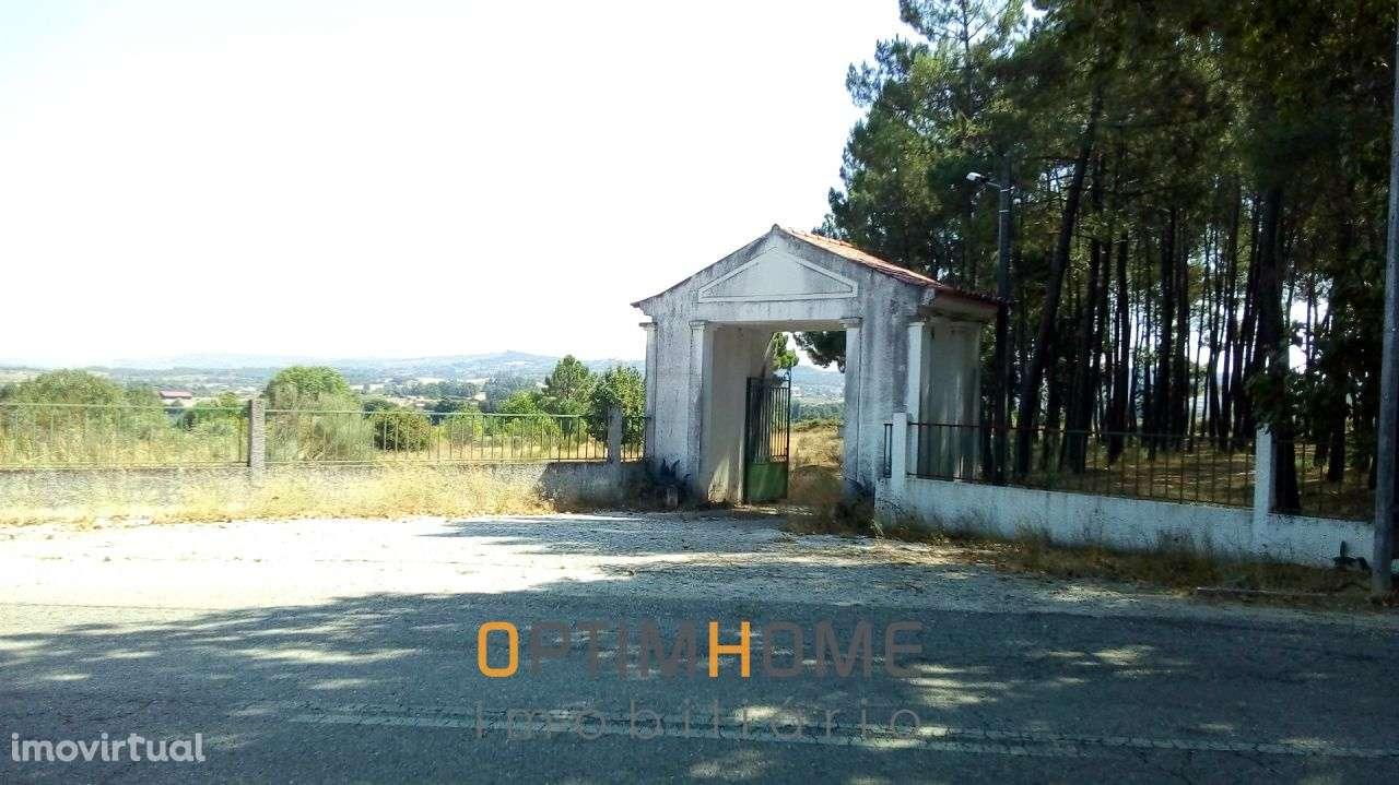 Quintas e herdades para comprar, Caria, Belmonte, Castelo Branco - Foto 4