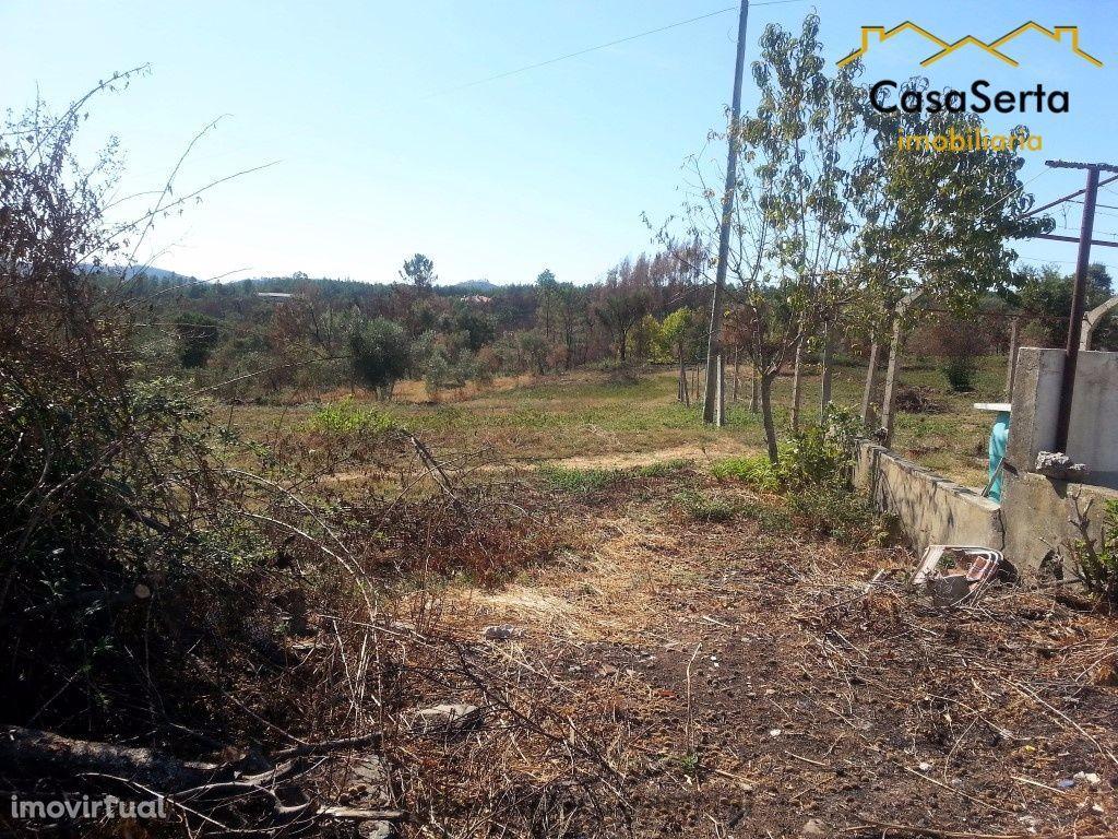 Terreno para comprar, Cernache do Bonjardim, Nesperal e Palhais, Sertã, Castelo Branco - Foto 1
