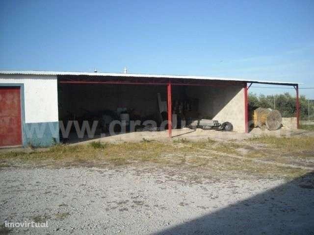 Armazém para comprar, Almaceda, Castelo Branco - Foto 27