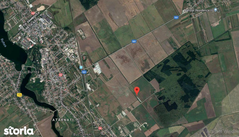 Teren intravilan 5753 mp in Buftea, Ilfov