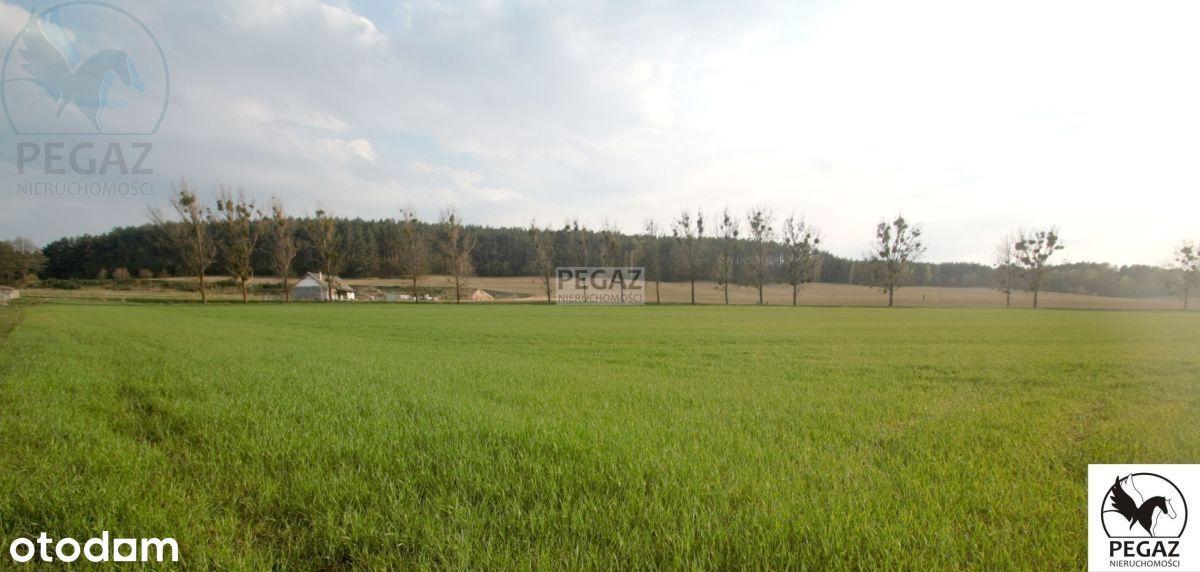 Działka rolna na skraju zabudowy w Milczu k. Chodz