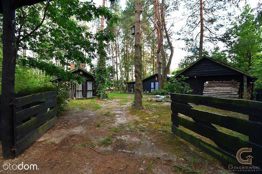 Posiadłość całoroczna w środku lasu w Tleniu !