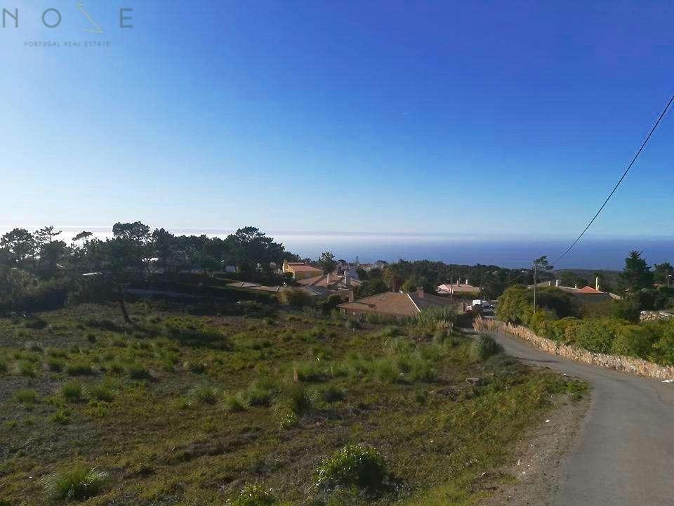Terreno para comprar, Colares, Sintra, Lisboa - Foto 3
