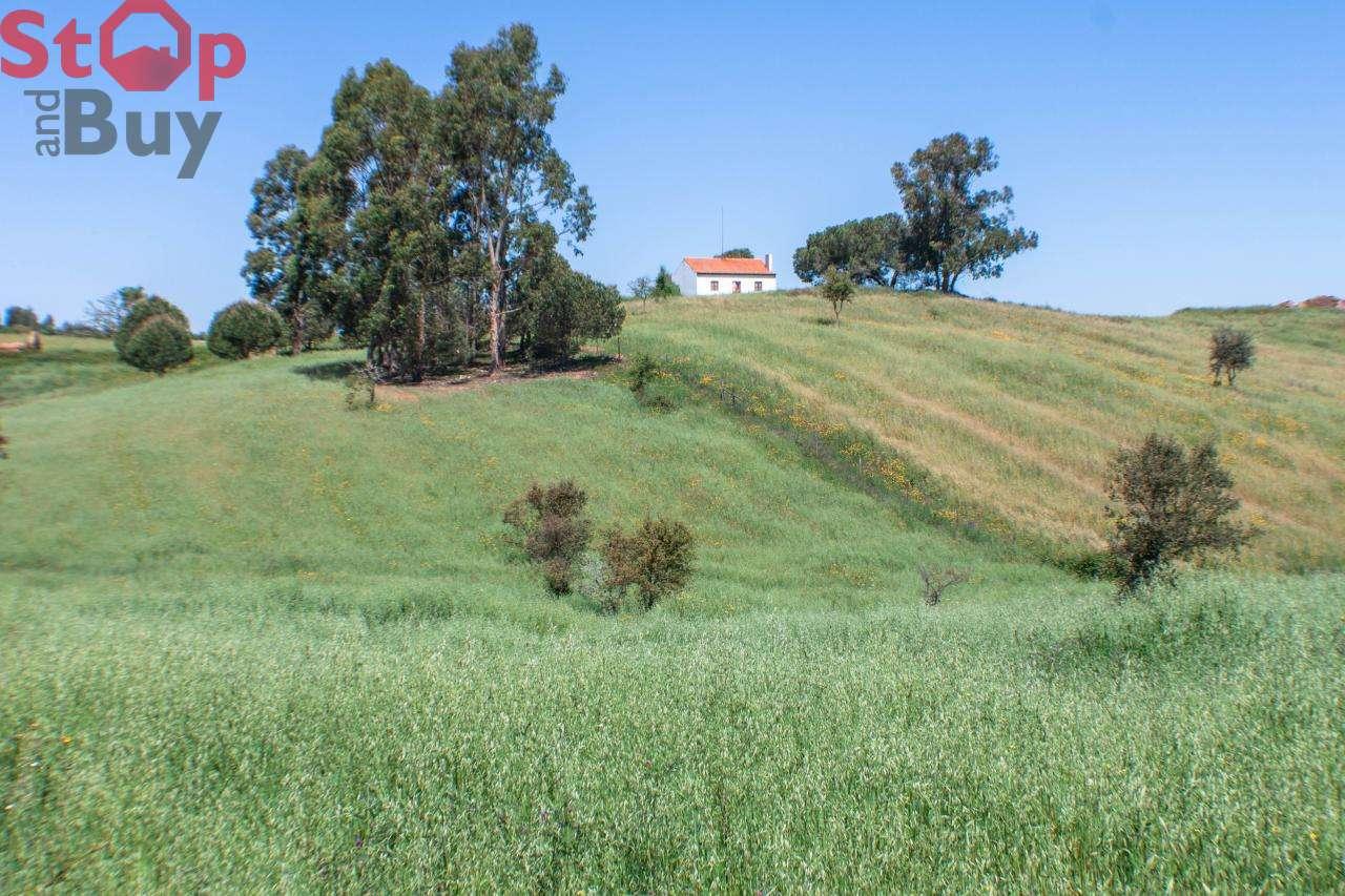 Quintas e herdades para comprar, Cercal, Setúbal - Foto 12