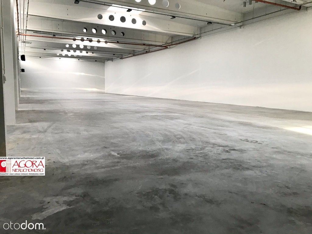 Hala Produkcja Magazyn 1095 m2, Rybitwy