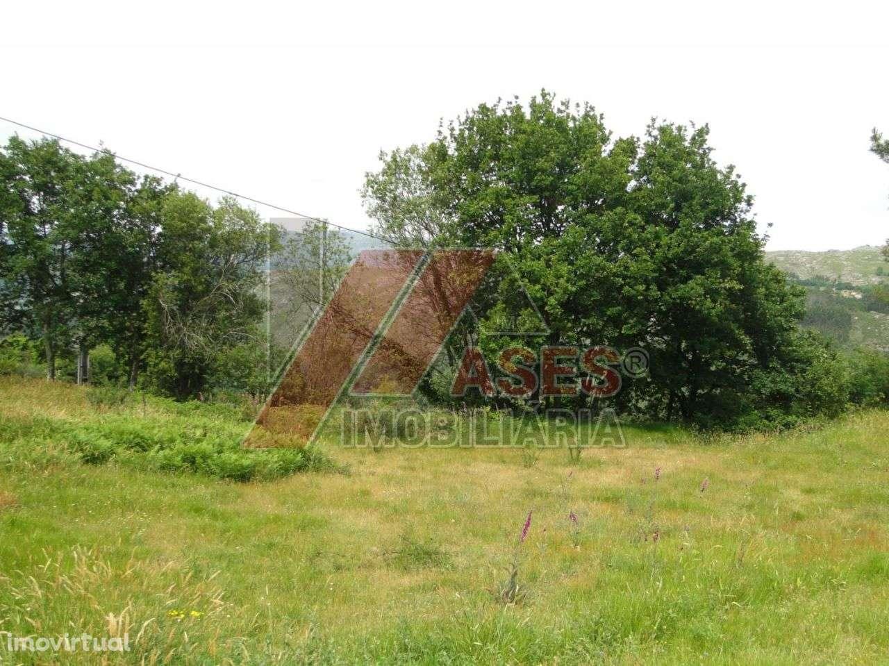 Terreno para comprar, Aboim, Felgueiras, Gontim e Pedraído, Braga - Foto 2