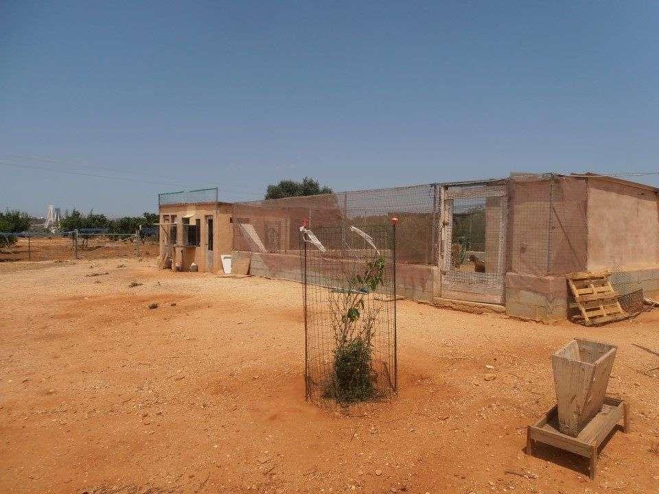 Quintas e herdades para comprar, Estômbar e Parchal, Lagoa (Algarve), Faro - Foto 38