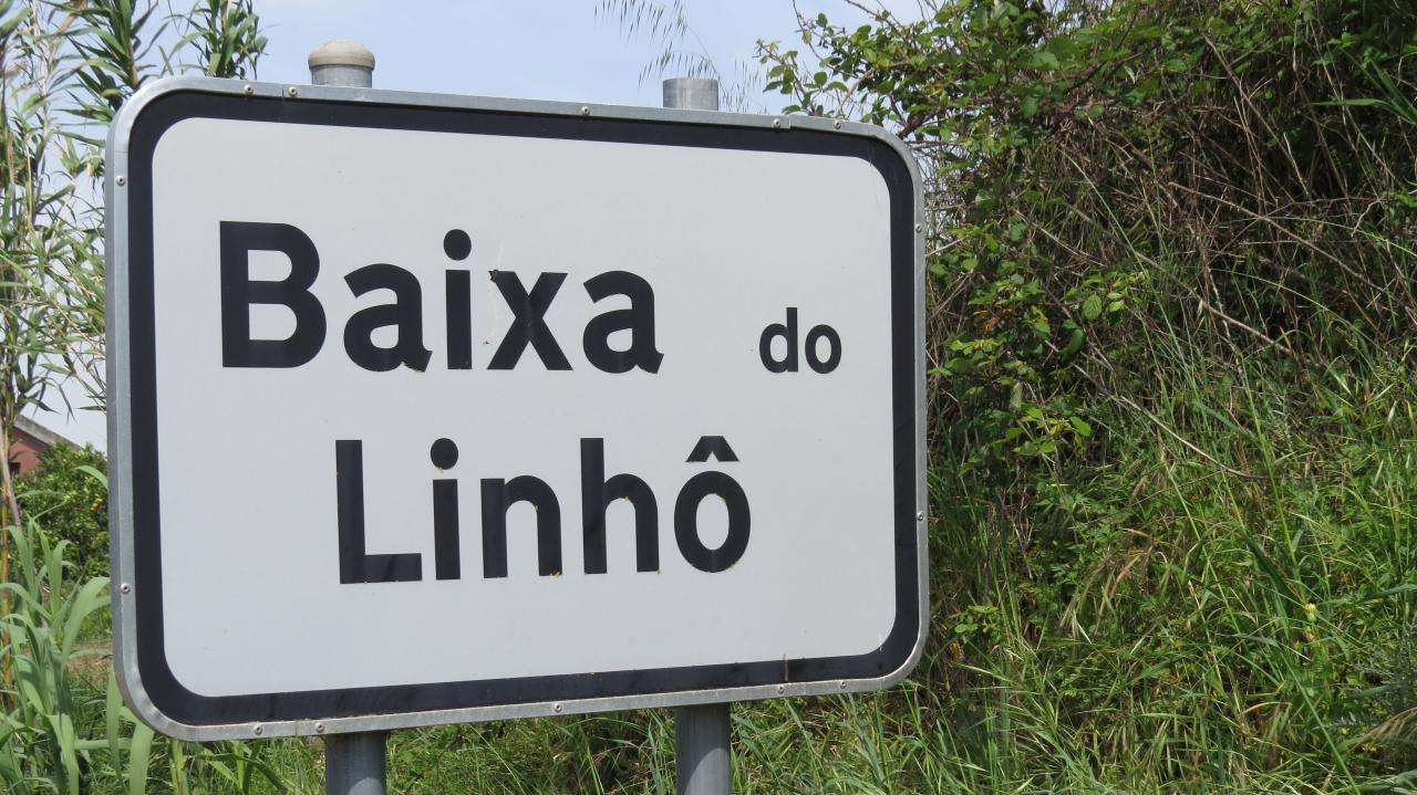 Terreno para comprar, Cardosas, Lisboa - Foto 1