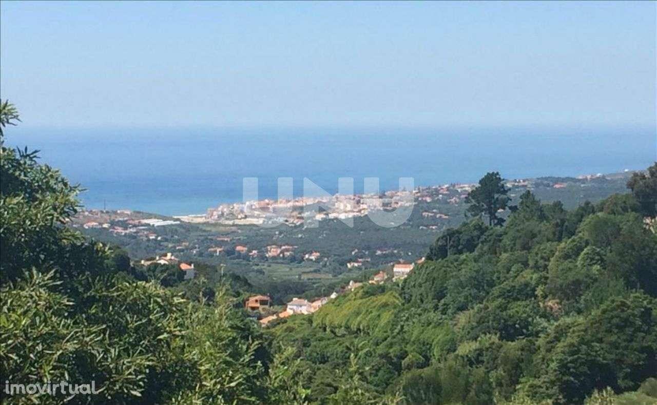 Quintas e herdades para comprar, Colares, Lisboa - Foto 3