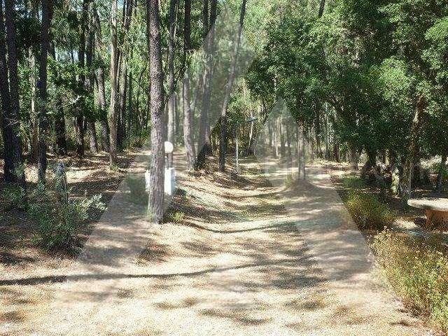 Quintas e herdades para comprar, Sangalhos, Anadia, Aveiro - Foto 17
