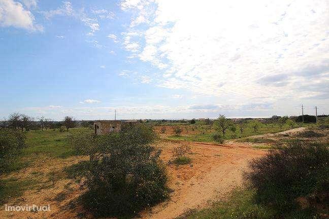 Terreno para comprar, Alcantarilha e Pêra, Silves, Faro - Foto 3