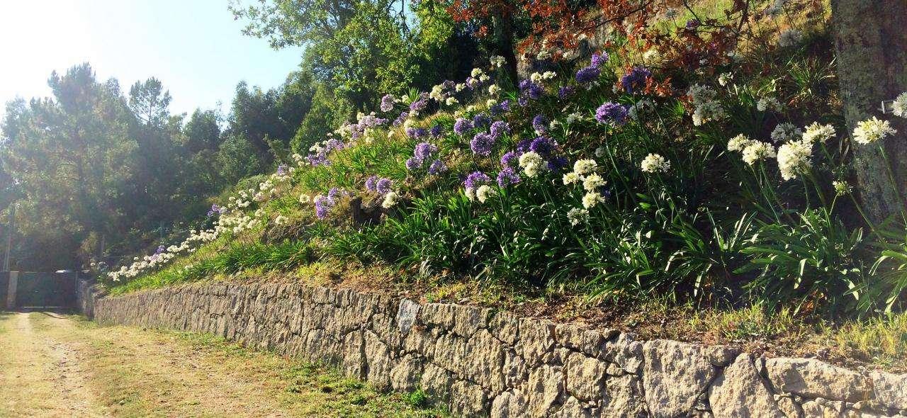 Quintas e herdades para arrendar, Anais, Viana do Castelo - Foto 17