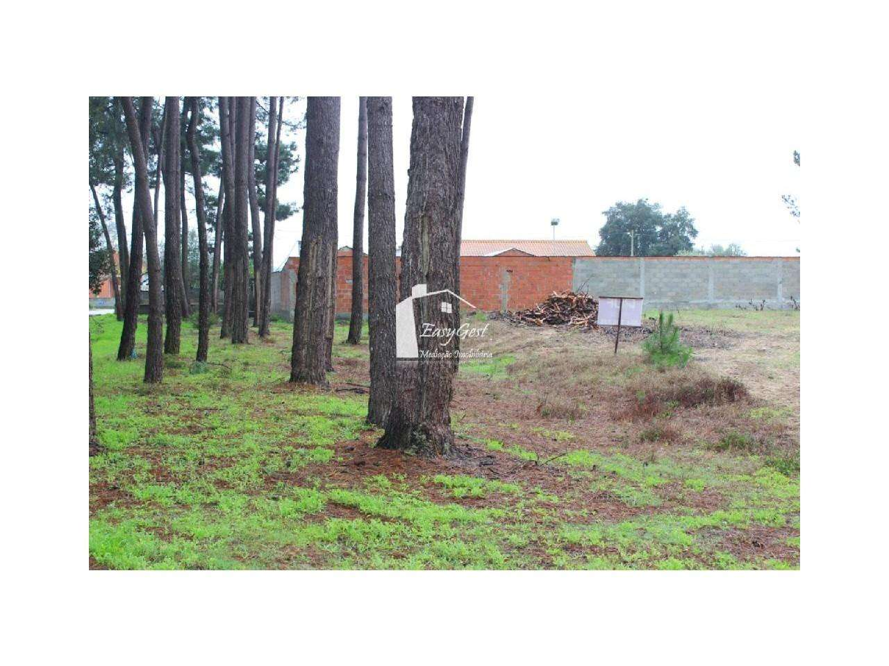 Terreno para comprar, Monte Redondo e Carreira, Leiria - Foto 12