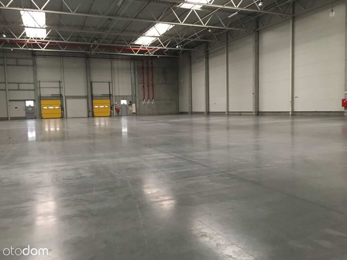 Hala/Magazyn, 5 000 m², Gliwice