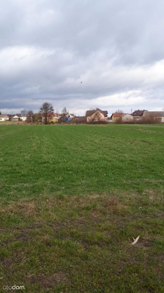 Działka (Rolna) - Latowicz