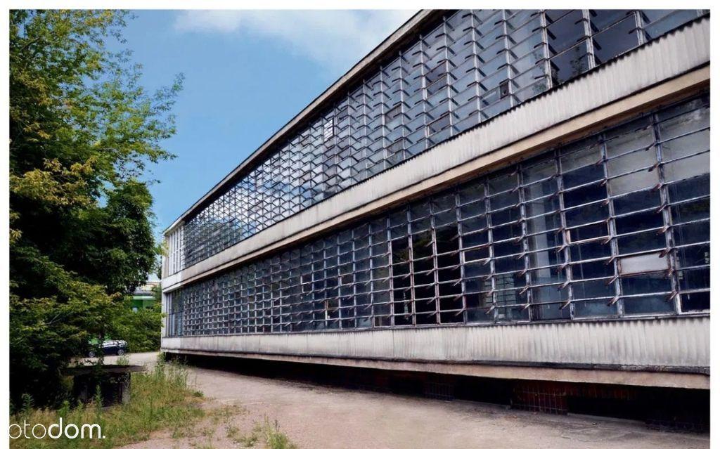Lokal użytkowy, 2 329 m², Błonie