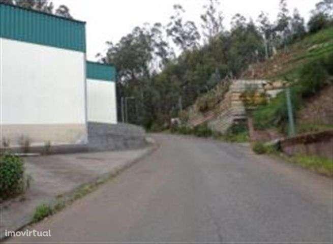 Armazém para comprar, Camacha, Santa Cruz, Ilha da Madeira - Foto 4