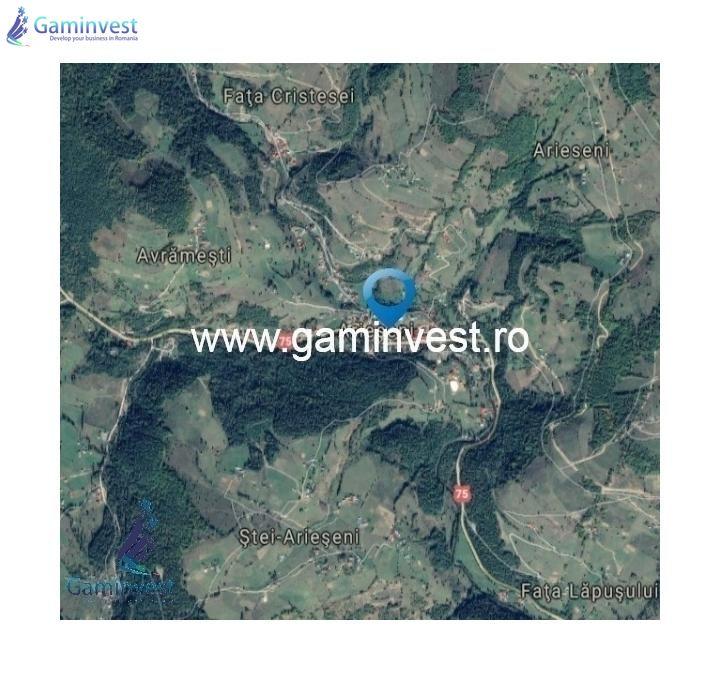 GAMINVEST - De vanzare teren extravilan in Arieseni, Alba V1555