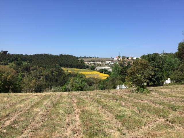Terreno para comprar, Venda do Pinheiro e Santo Estêvão das Galés, Mafra, Lisboa - Foto 2