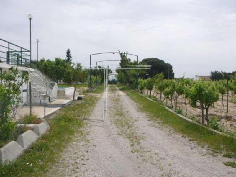 Quintas e herdades para comprar, Pinhal Novo, Setúbal - Foto 35