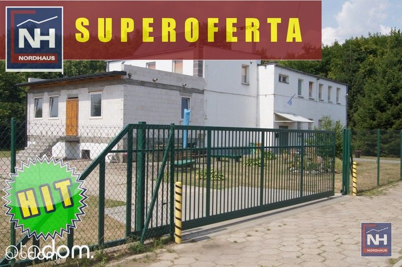 Lokal użytkowy, 450 m², Świecie