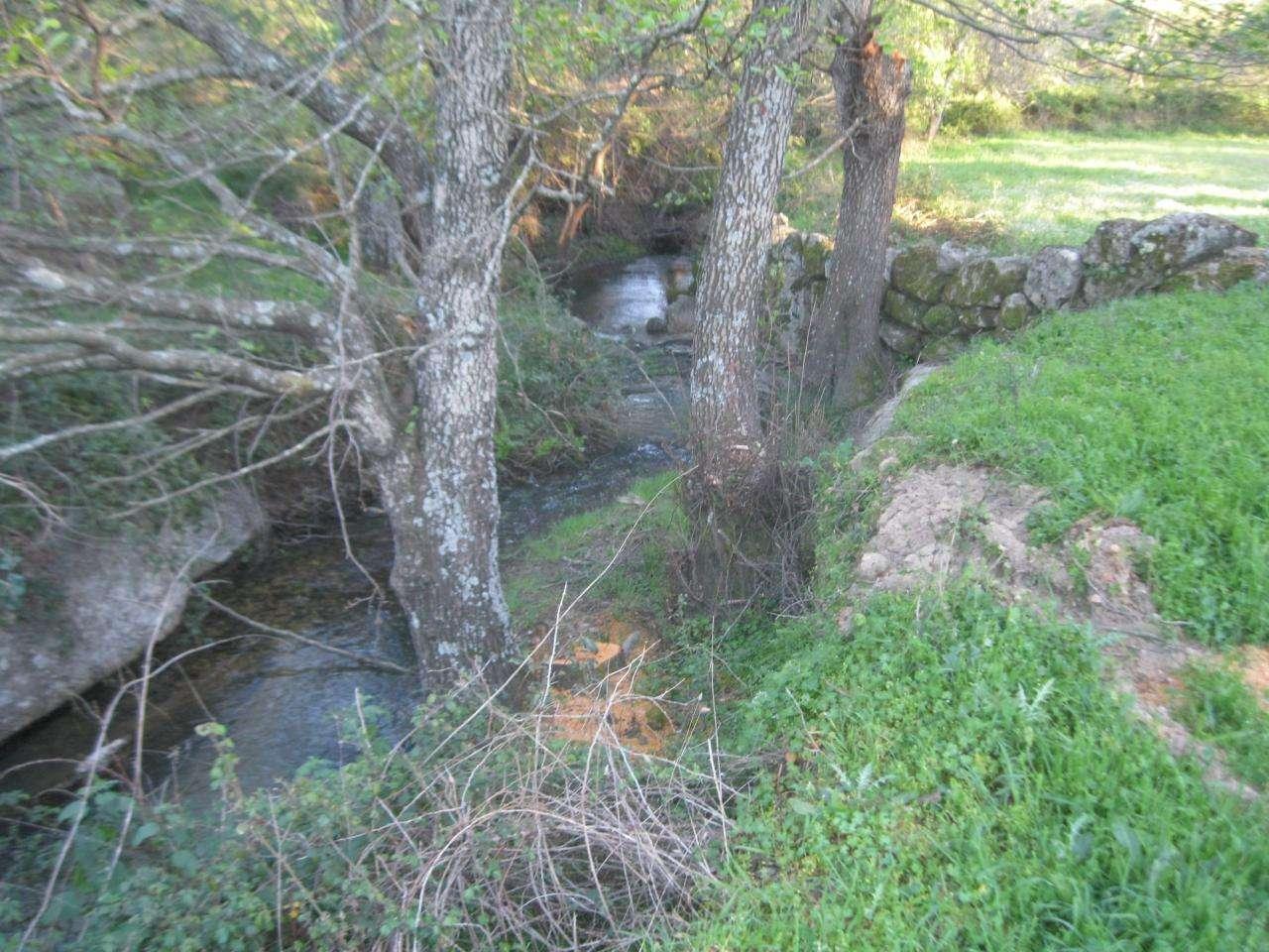 Terreno para comprar, Vale de Prazeres e Mata da Rainha, Castelo Branco - Foto 9