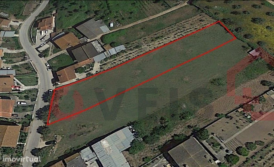 Terreno para construção nos arredores de Coimbra