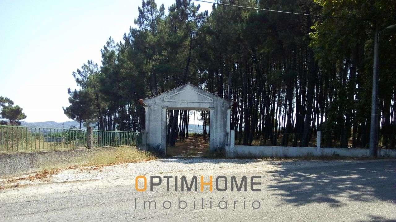 Quintas e herdades para comprar, Caria, Belmonte, Castelo Branco - Foto 19