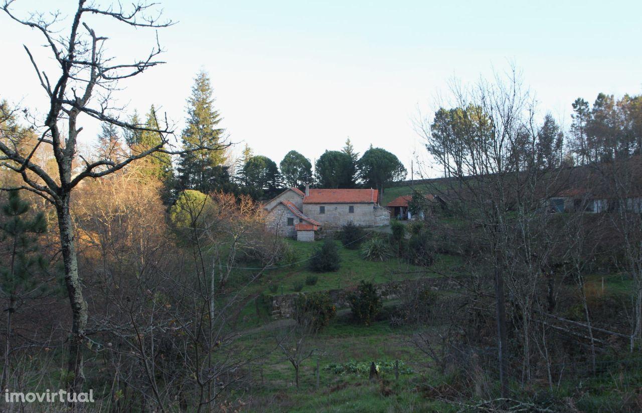 Quinta 13ha, Marco de Canaveses, Porto