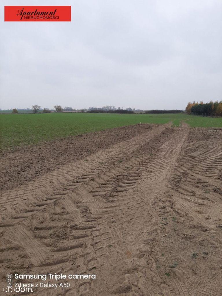 Działki budowlane w Białożewinie