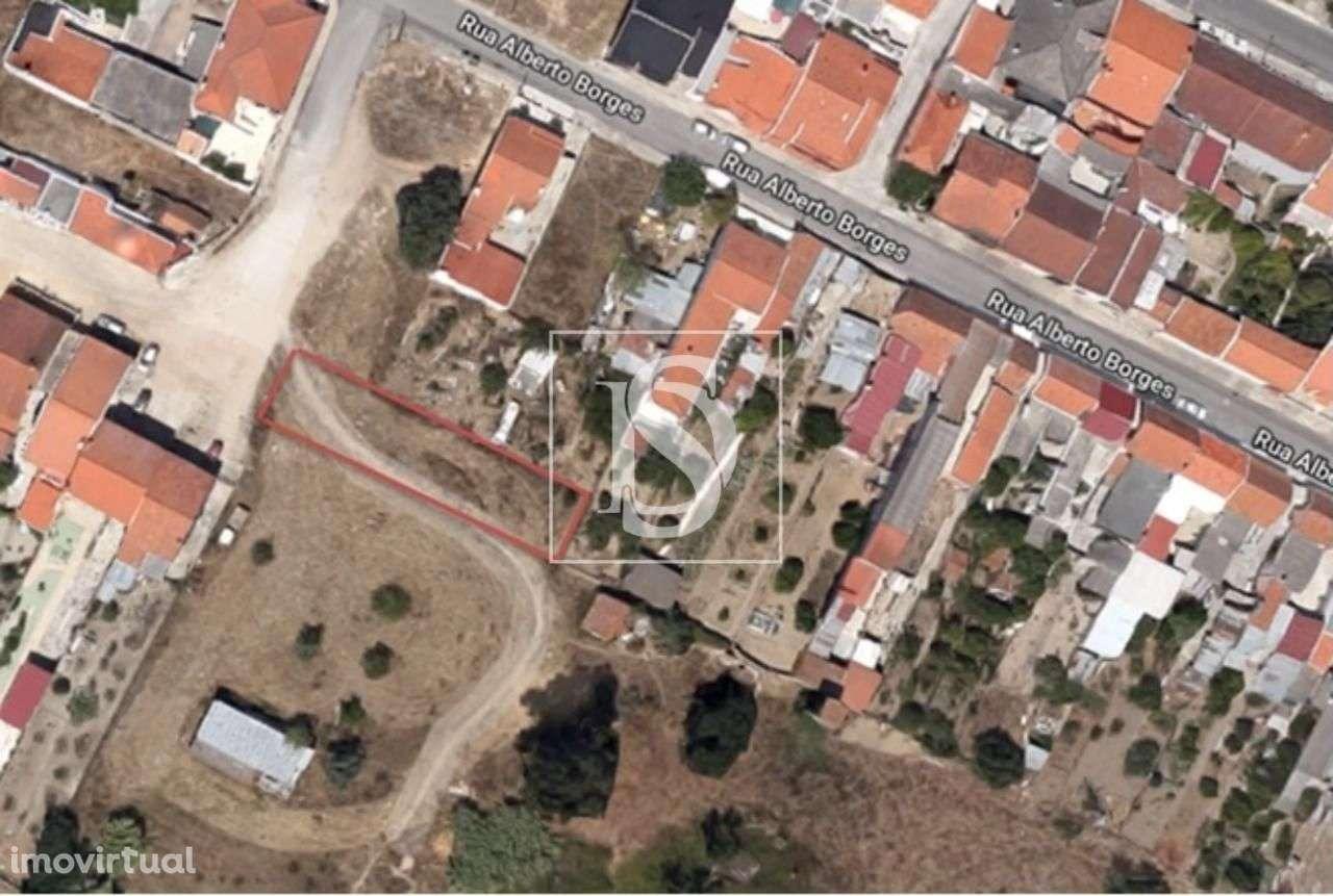 Terreno para comprar, Alpiarça, Santarém - Foto 1