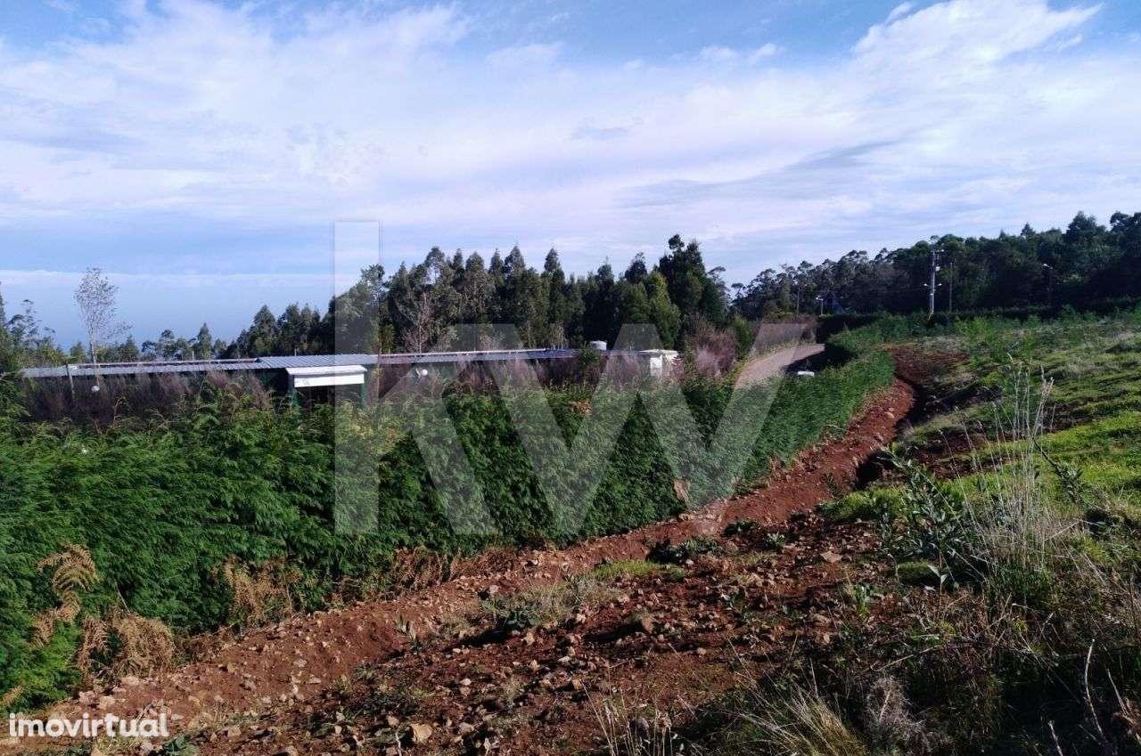Terreno para comprar, Santana - Foto 5