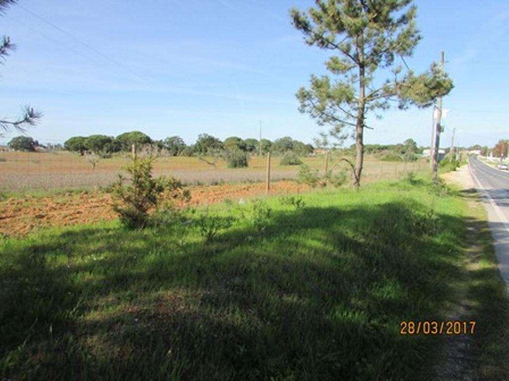 Terreno para comprar, Pinhal Novo, Setúbal - Foto 9