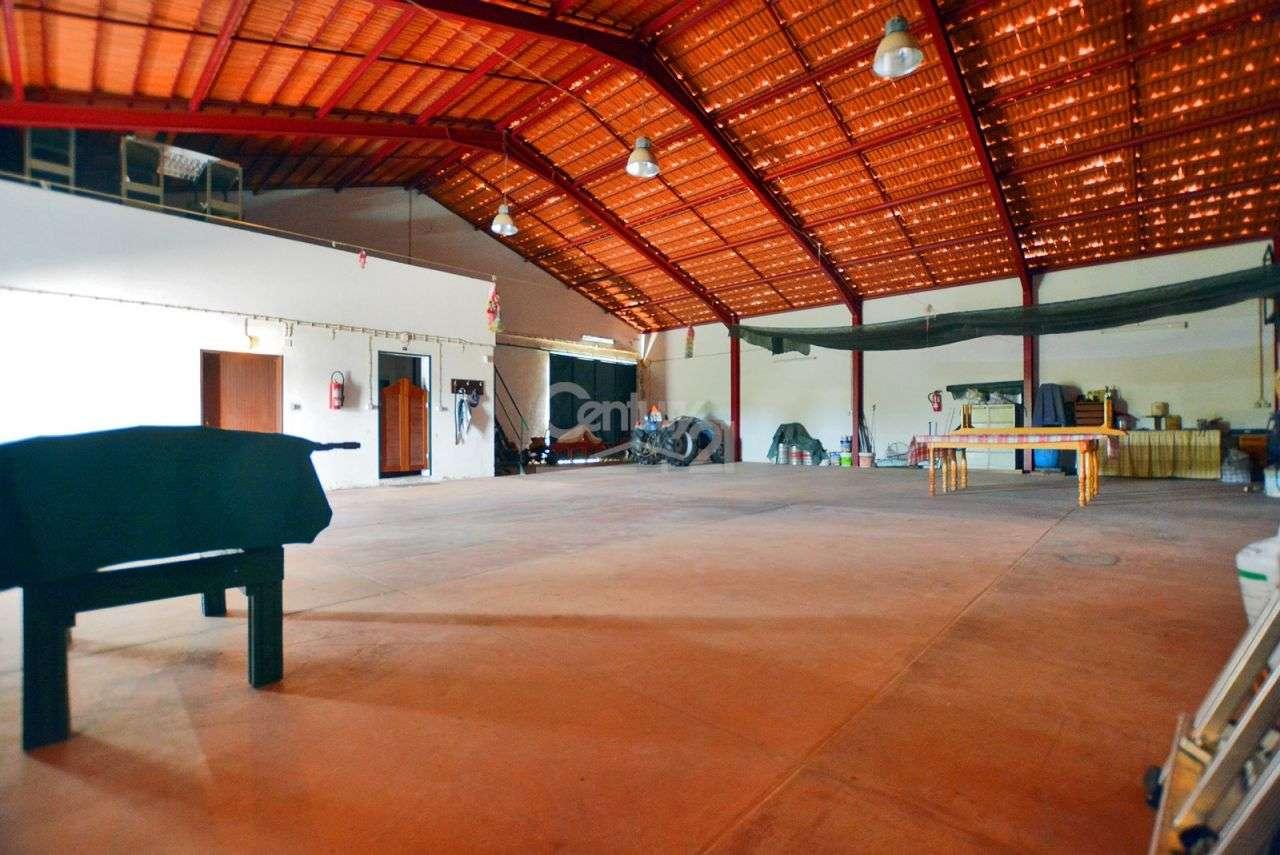 Quintas e herdades para comprar, Branca, Coruche, Santarém - Foto 41