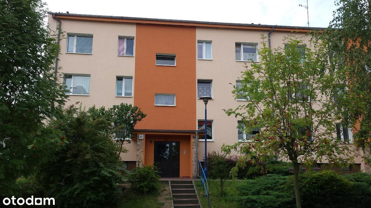 Mieszkanie 3 pokoje - WOLNE OD ZARAZ