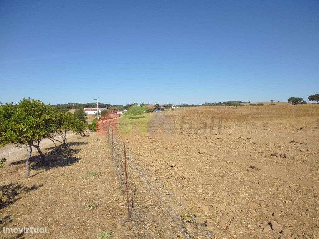 Quintas e herdades para comprar, Vila Verde de Ficalho, Beja - Foto 20