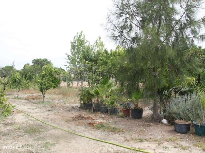 Terreno para comprar, Pinhal Novo, Setúbal - Foto 37