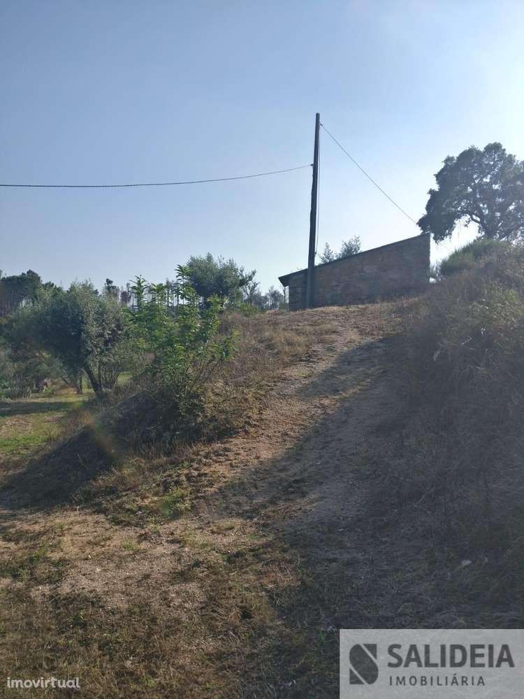 Terreno para comprar, Currelos, Papízios e Sobral, Viseu - Foto 9