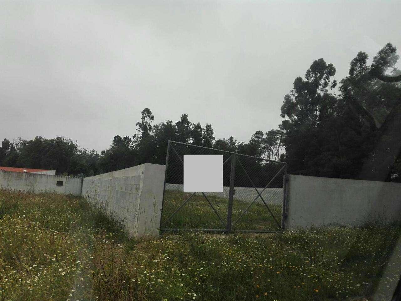 Terreno para comprar, Vila de Cucujães, Aveiro - Foto 1