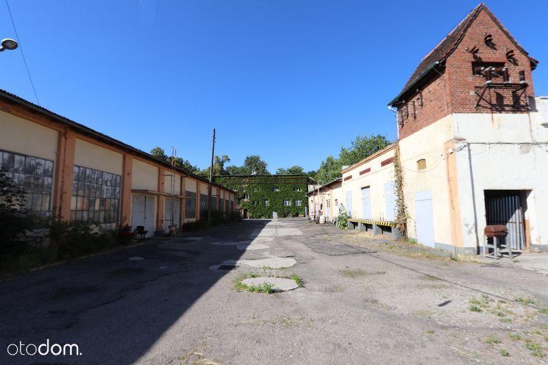Lokal użytkowy, 7 951 m², Sulechów