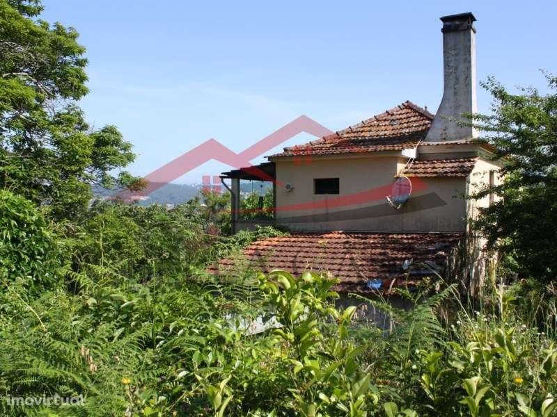 Quintas e herdades para comprar, Cedrim e Paradela, Sever do Vouga, Aveiro - Foto 3