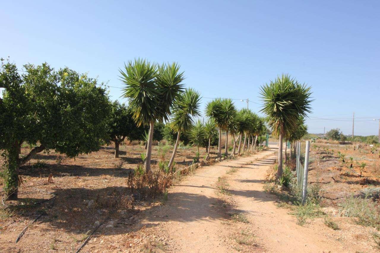 Quintas e herdades para comprar, Porches, Faro - Foto 15