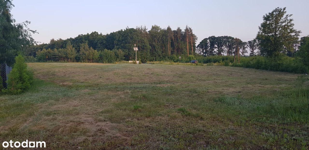 Działka rolna Wichulec przy lesie