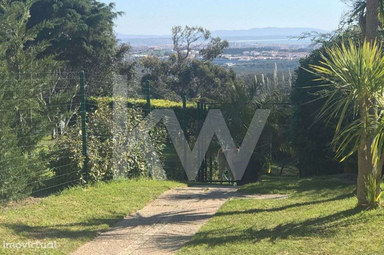 Moradia para comprar, Alcabideche, Lisboa - Foto 18